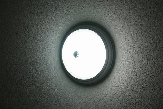 The Sun Under the Ceiling