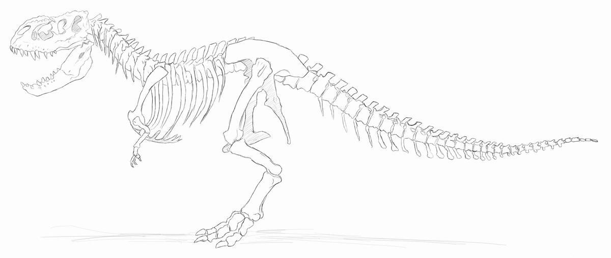 1200 x 506 jpeg 67kBVastatosaurus