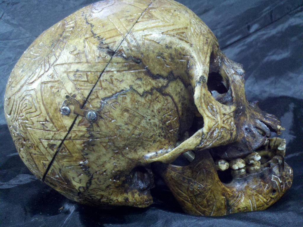 Carved real human skull from realhumanskull by