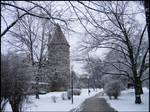 Castle Park in Winter