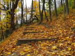 Stairs to Amon Hen