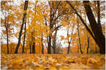 Simple Autumn