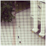InstaG: Path of Ants