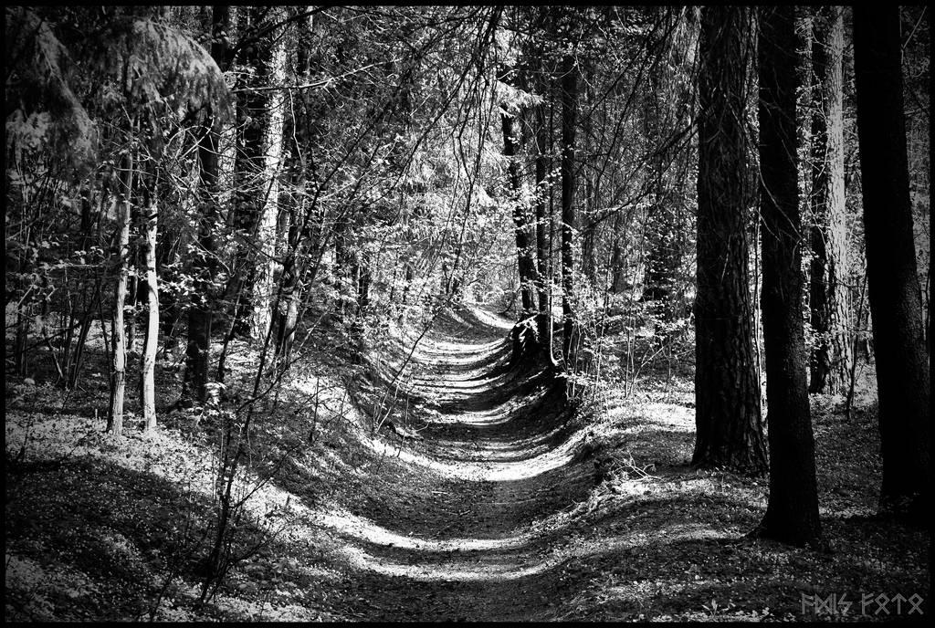 The Blackwalk by Helkathon