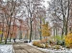 Between the Seasons by Helkathon