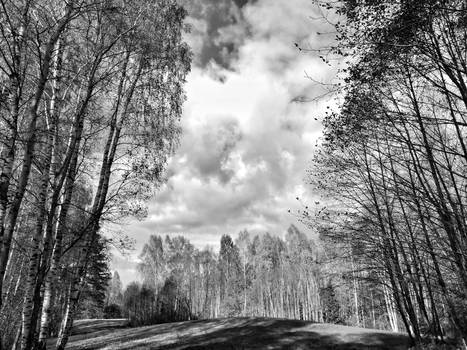 Sound of Serenity, in Black and White