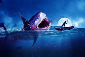 Sharkie. by MagikFeller