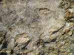 Big Detail Rock Texture