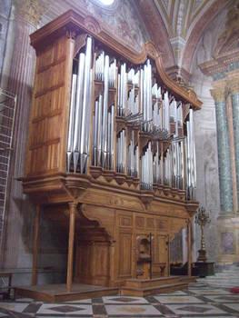 Organ Stock