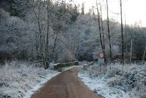 Snowy Path Stock