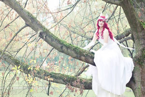 Child of Light : Beneath the Canopy