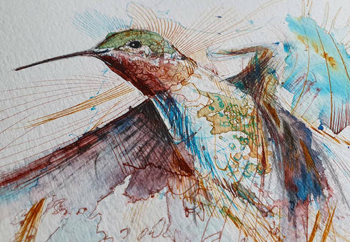 work in progress.. hummingbird piece