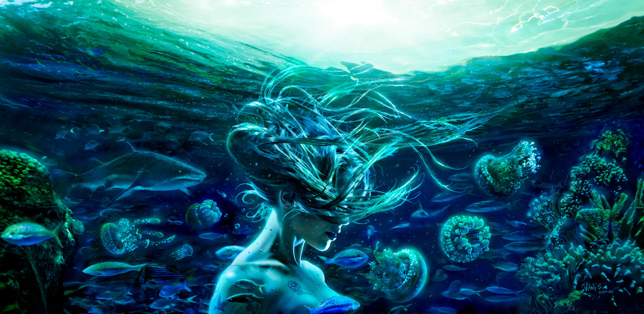 where to find sea bream of love in fantasy life A guy out there was meant to be the love of your life you will find love wrapped in sparkling gems 9 that fantasy of what your life would be.