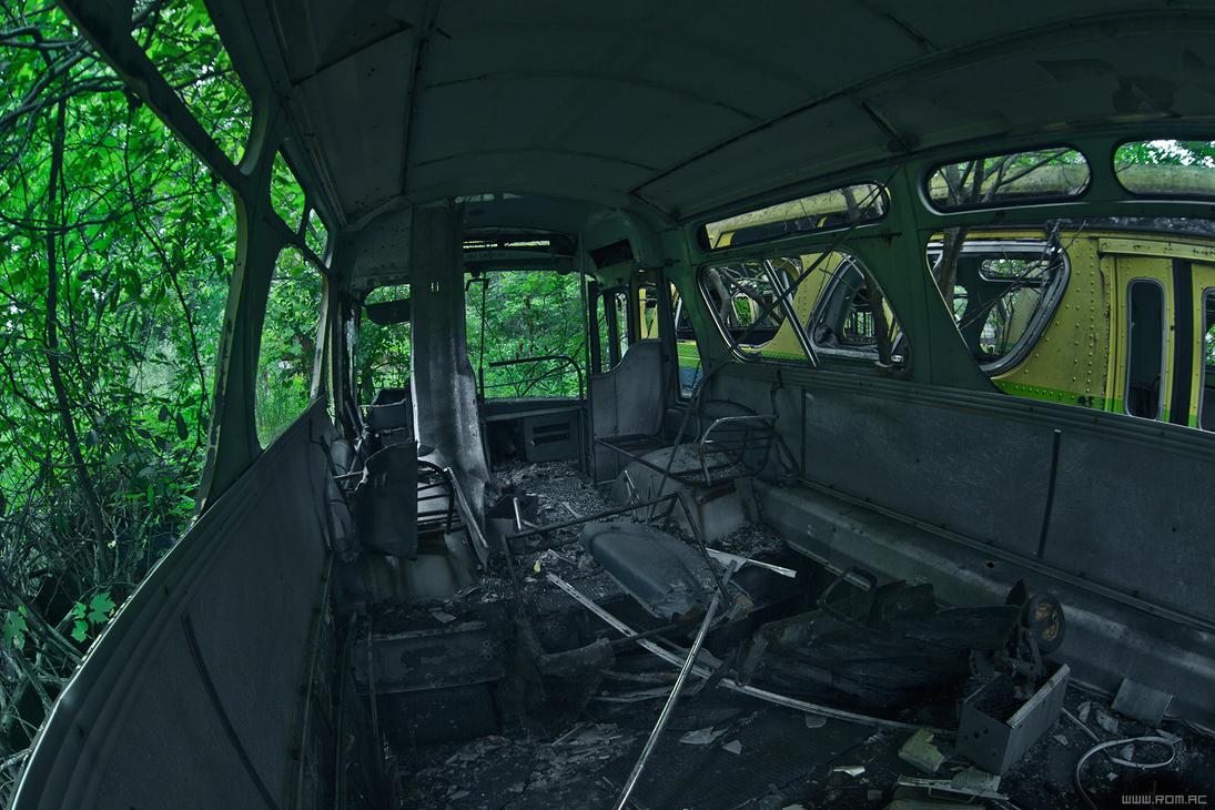 The last field trip by alexiuss