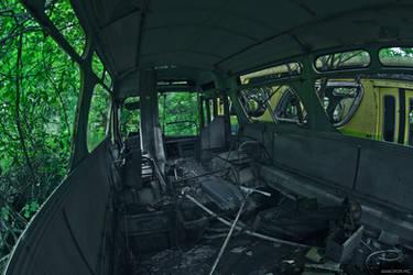 The last field trip