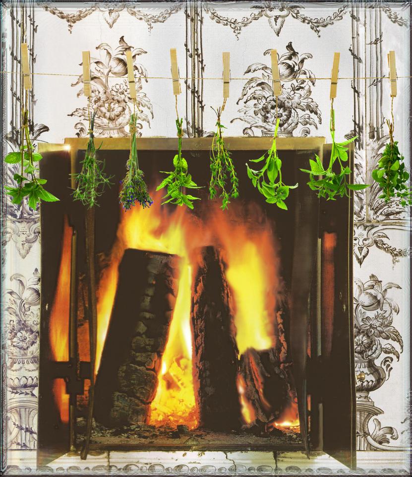 Drying Herbs by Alienette