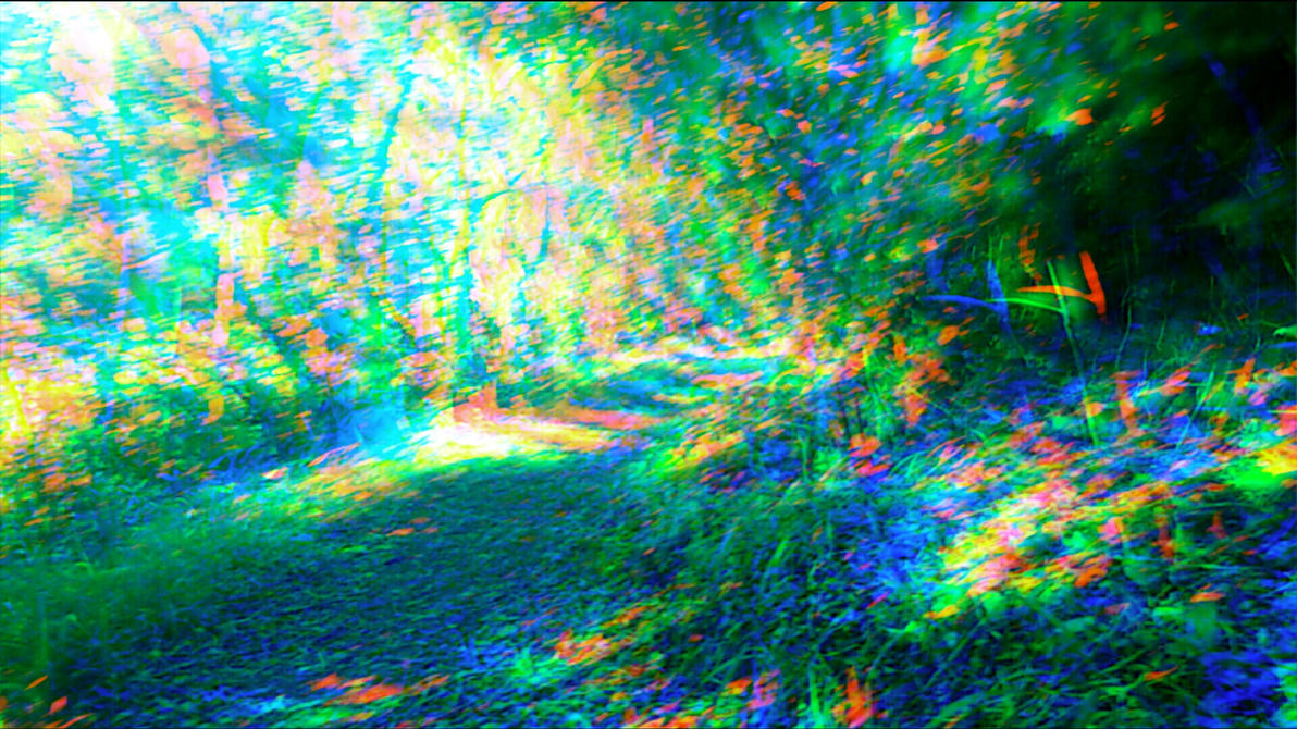 Trippy forest 3 by aniabuckle on deviantart - Trippy nature wallpaper ...