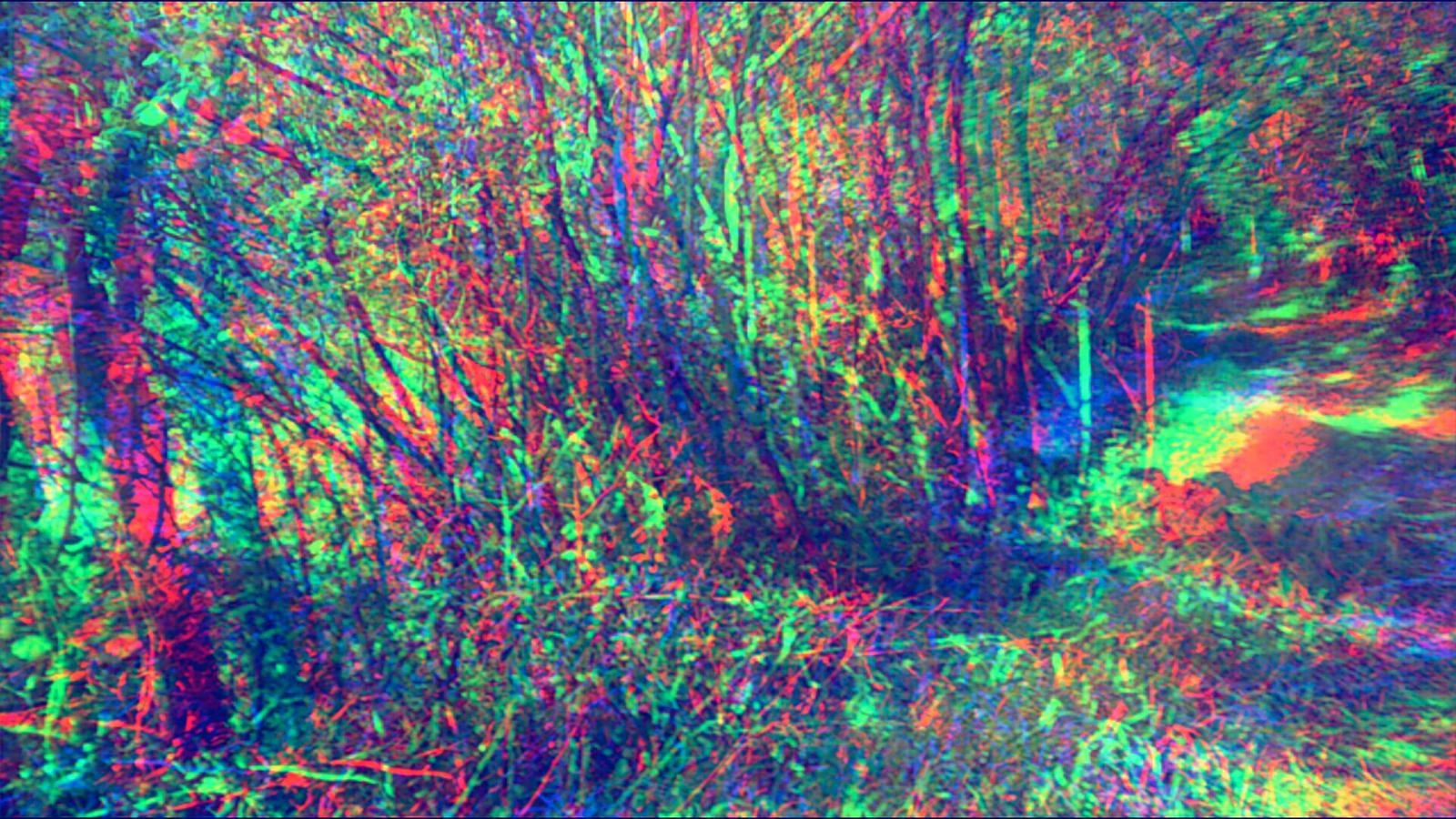 trippy forest by aniabuckle on deviantart