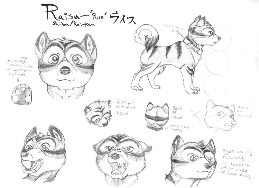 Raisu Model Sheet by rabidchild42