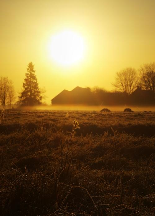 Spring's Morning by GertuSaariste