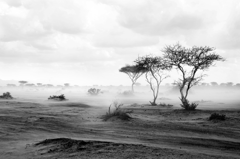Transposition I by Maitha-Bint-Khalid