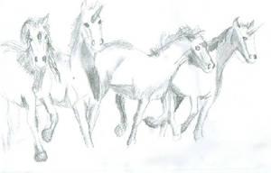 Unicorns by femalefred