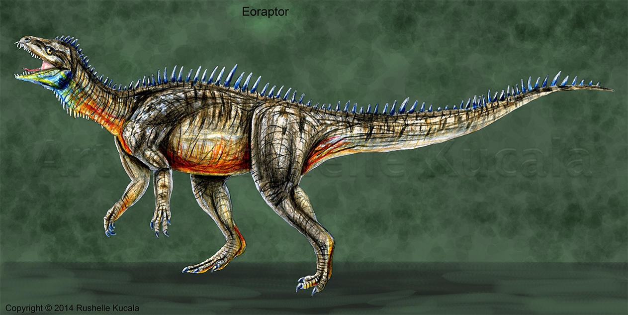 Eoraptor Reconstruction by TheDragonofDoom