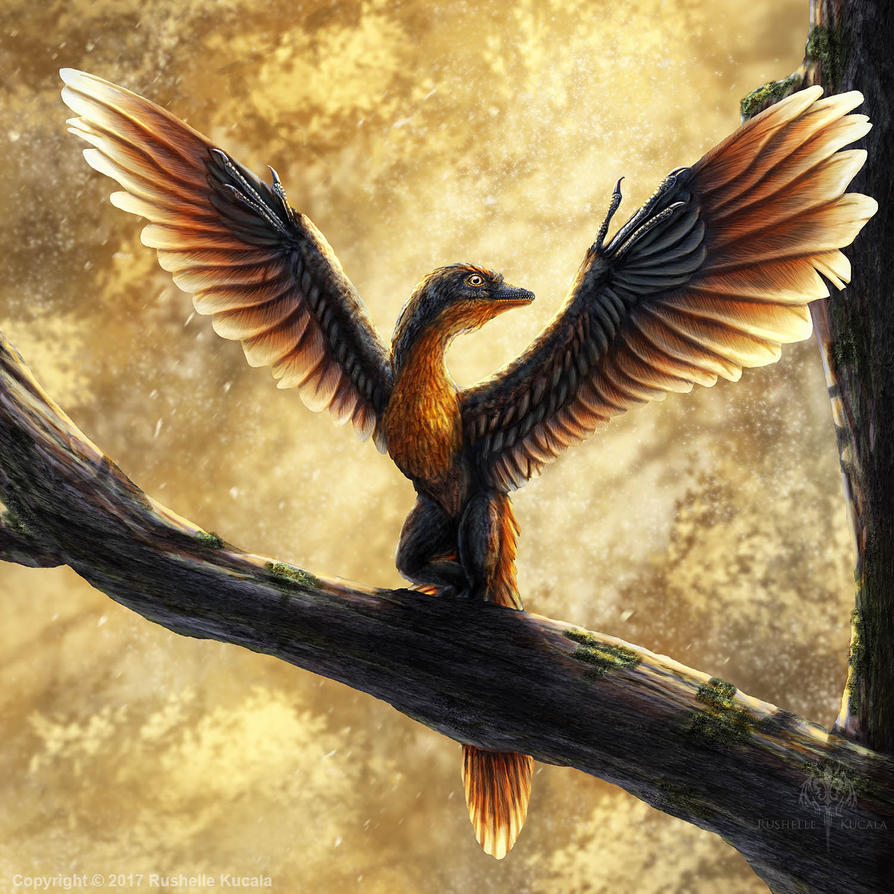 Archaeopteryx Lithographica Commission by TheDragonofDoom ...