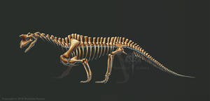Shringasaurus Indicus Skeleton Study (No Labels)