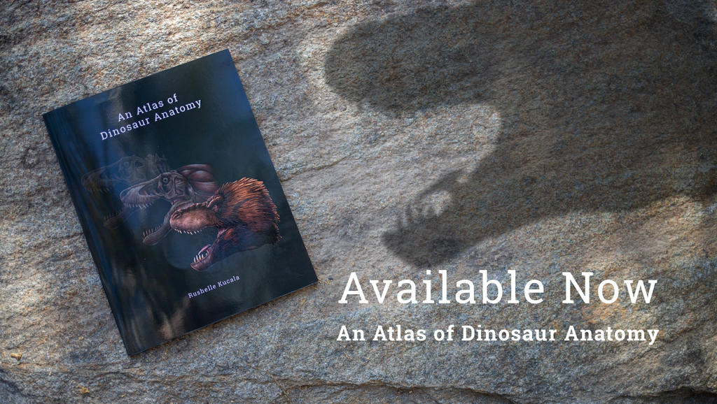 An Atlas of Dinosaur Anatomy Book Available Now