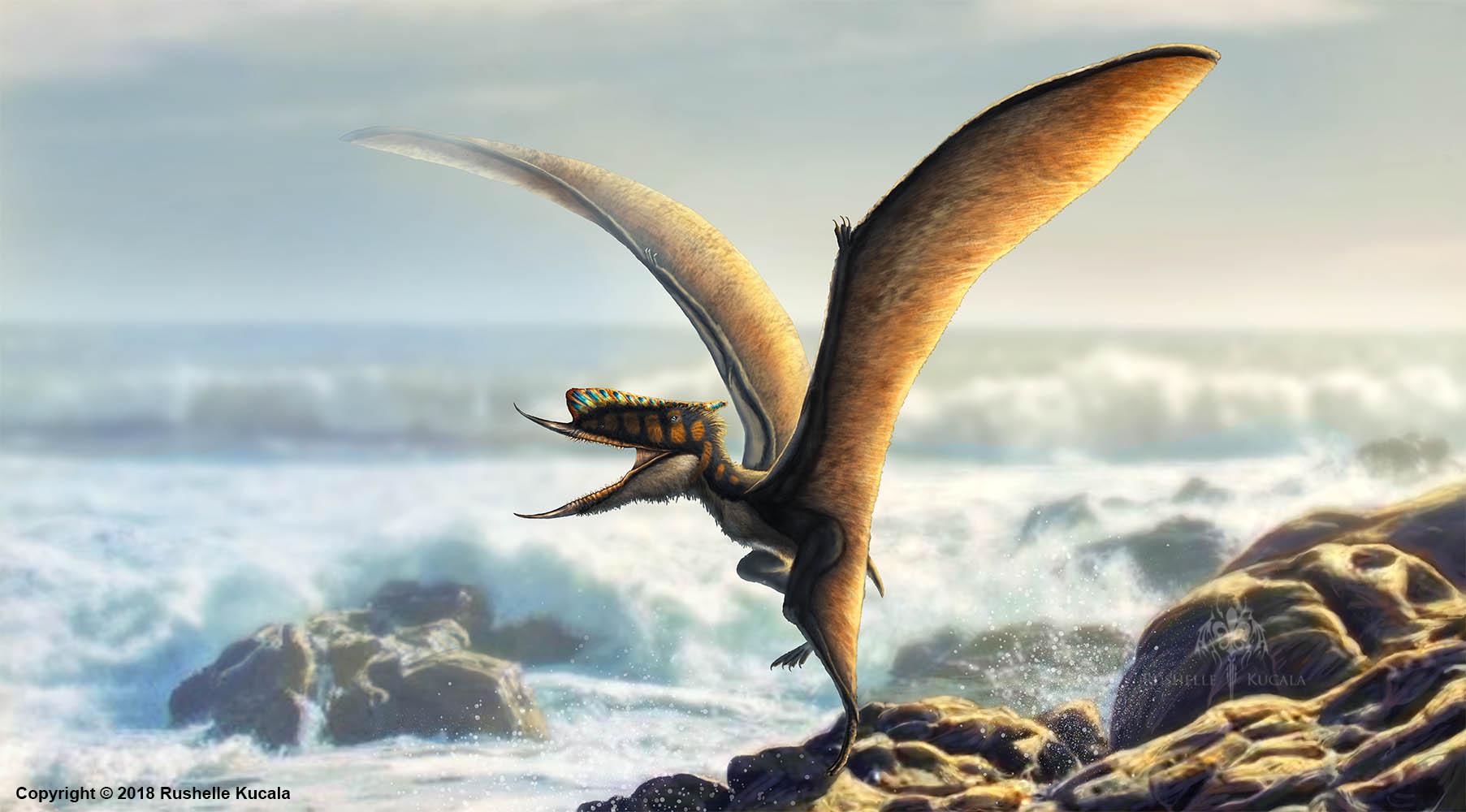 Dsungaripterus Weii Restored by TheDragonofDoom