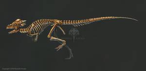 Pachycephalosaurus Skeleton Study (No Labels)