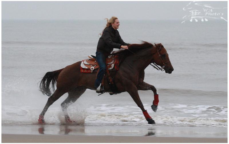 Doc on the beach by Wieneke