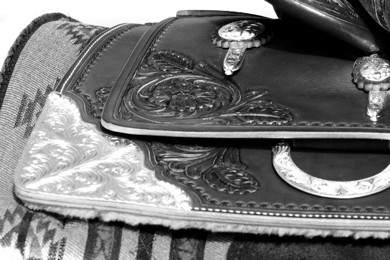 My new western saddle by Wieneke