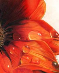 Wavering Flower by LauraMel