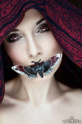 Silence by la-esmeralda