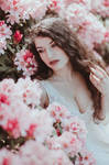 Pastel Blossoms II