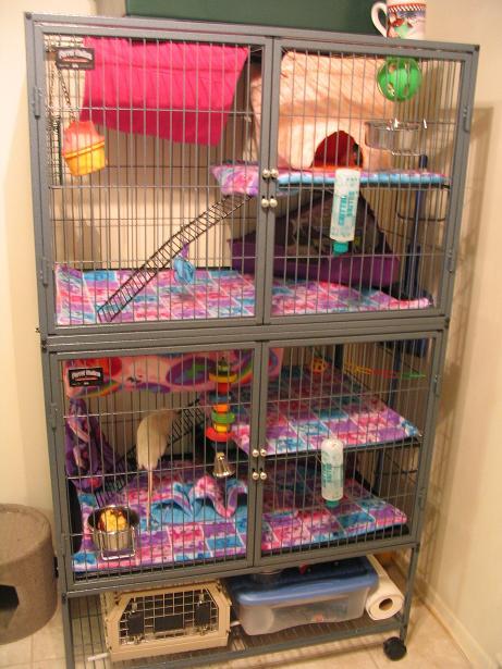ferret nation rat cage by minionofsloth on deviantart. Black Bedroom Furniture Sets. Home Design Ideas