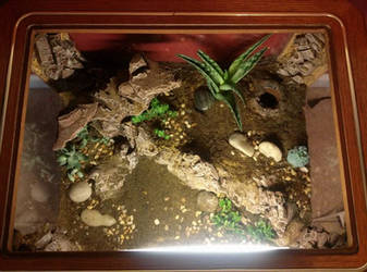 Leopard Gecko Glass Top End Table