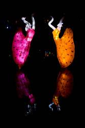 Lantern Dancers by Aeris-13