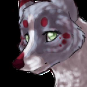 Aerui's Profile Picture