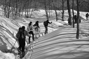 Snowshoeing by rtraverso86