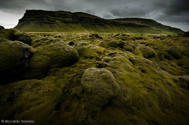 Icelandic Moss by rtraverso86
