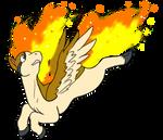 the pidgyta pegasus