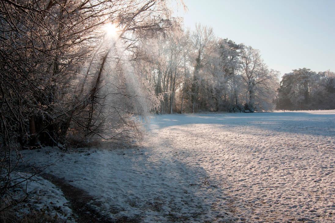 Cold start by Rayoflight2