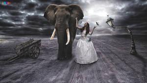 Fantasy 8 by eddieswan