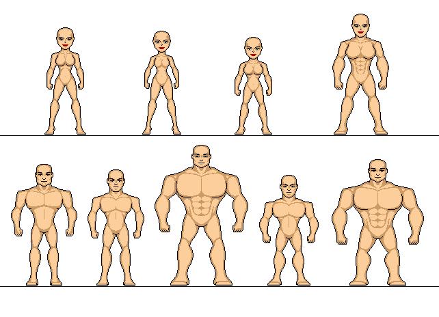 human templates