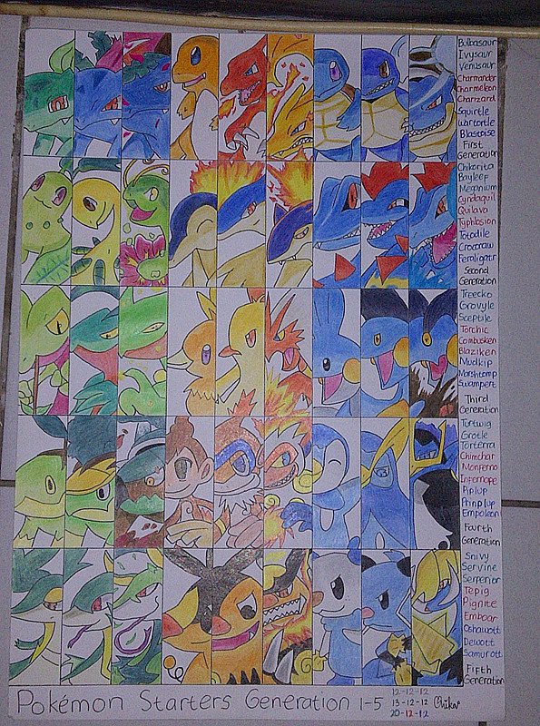 Pokemon Project Done 344839063