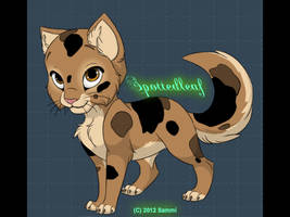Spottedleaf CUSTOM by SnowAngelSammi