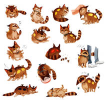 kittenbus by hhhwei